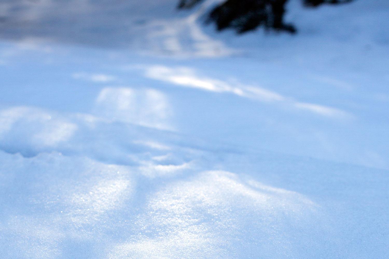 Snow, shade, sunlight