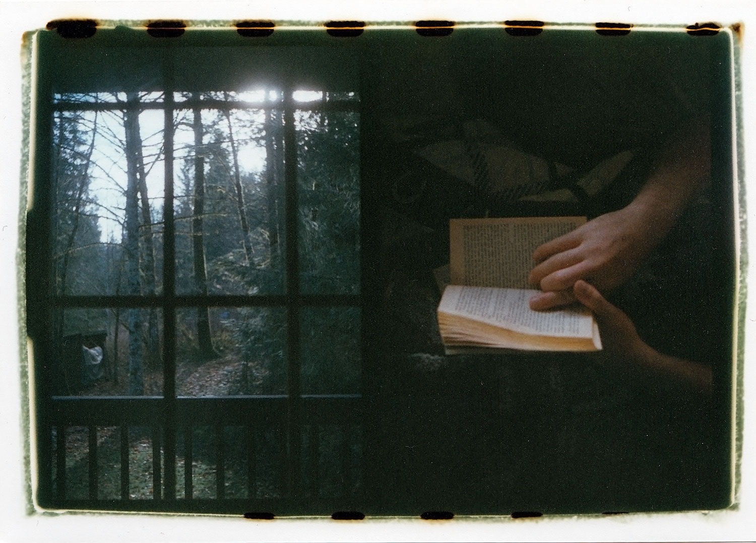 Reading out in the woods