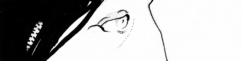 Ink-drawn eye, looking right towards bridge of nose.