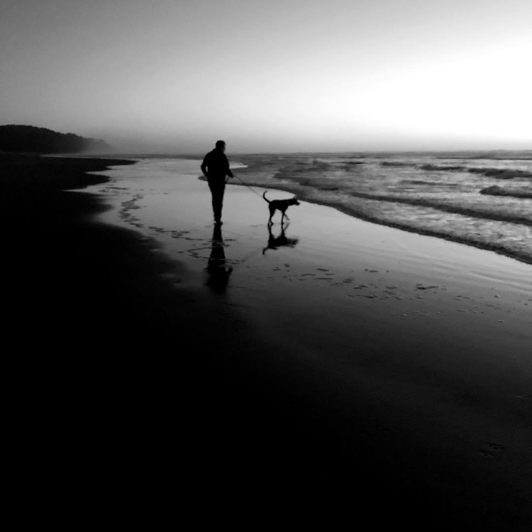 An image of a person walking a dog by the ocean, backlit by the last light of a sunset