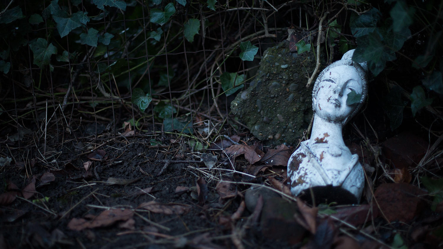 An inexplicable bust in the backyard.