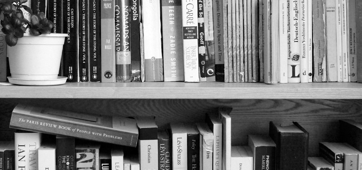 Some books, on a shelf, with a plant