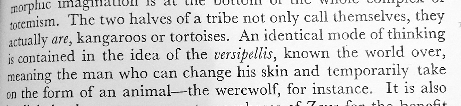 The two halves of a tribe not only call themselves, they actually are, kangaroos or tortoises. An identical mode of thinking is contained in the idea of the versipellis, known the world over, meaning the man who can change his skin and temporarily take on the form of an animal—the werewolf, for instance.