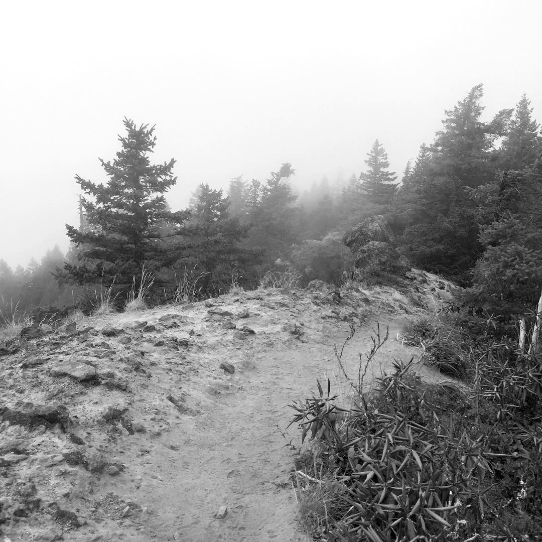 A black and white image of a misty height, uncanny