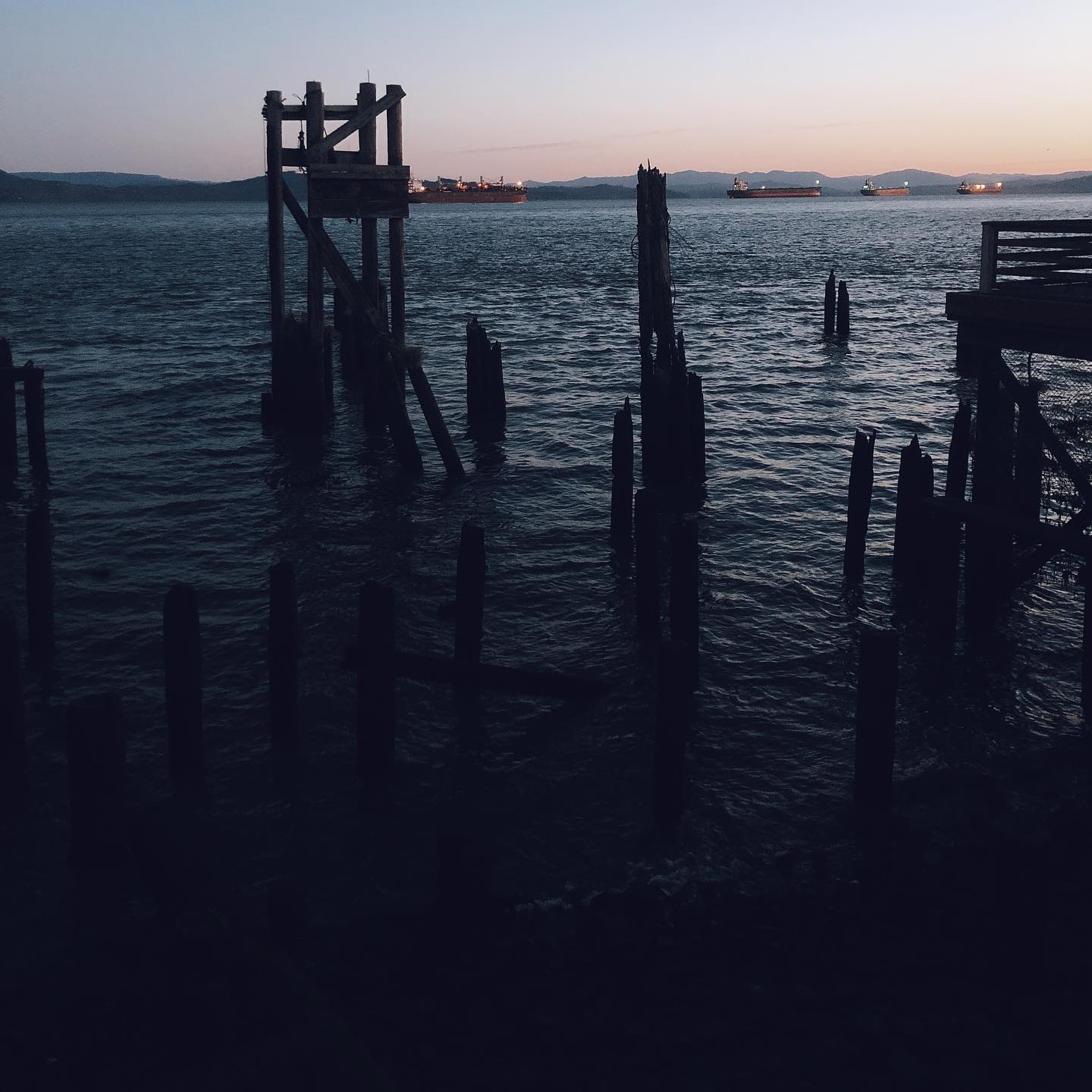An image of old pilings, half rotted, in the Columbia River, near Astoria, on an early autumn morning